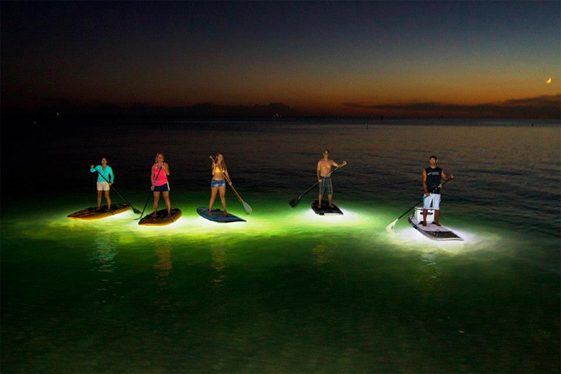 Glow Stand Up paddleboard